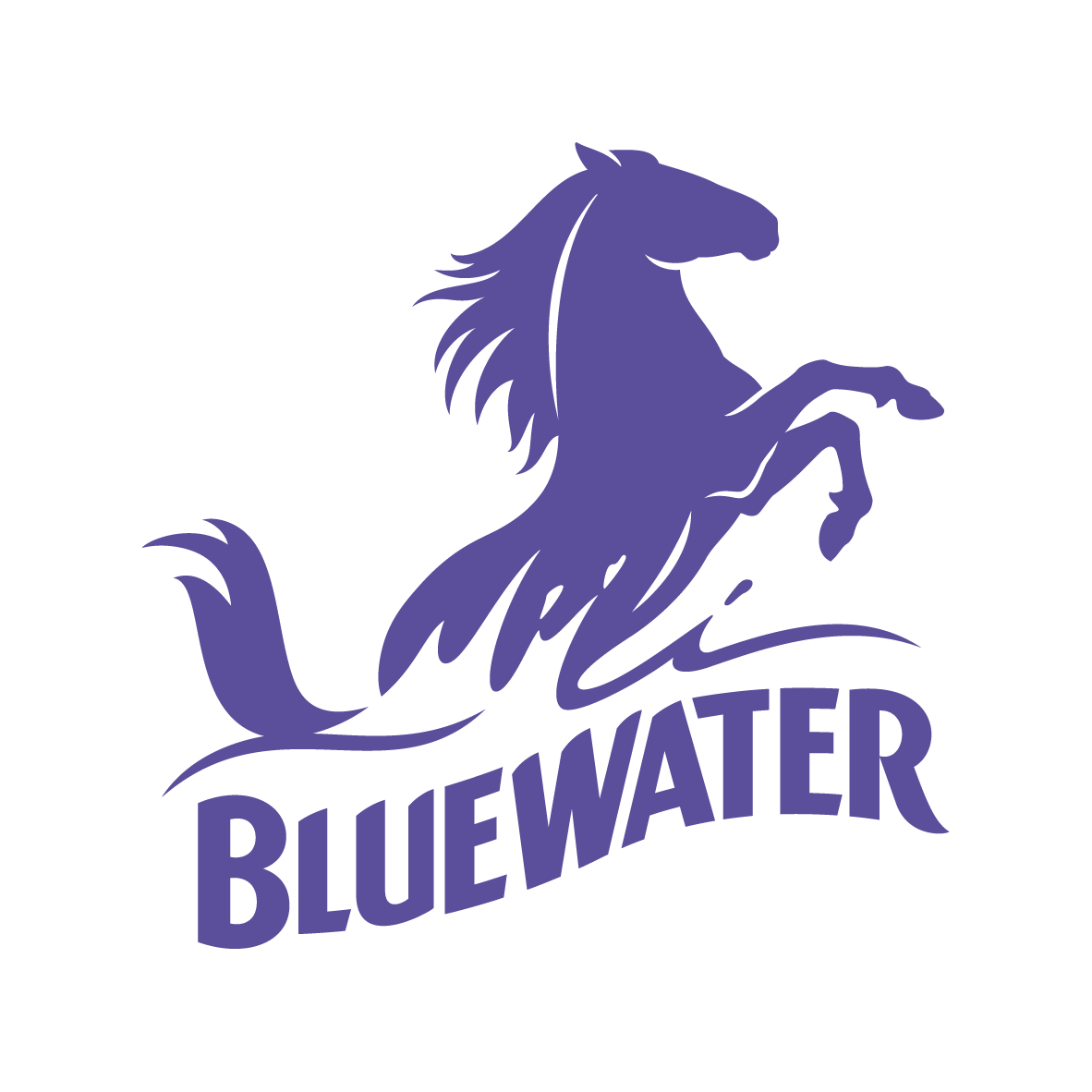 Image result for bluewater shopping centre logo