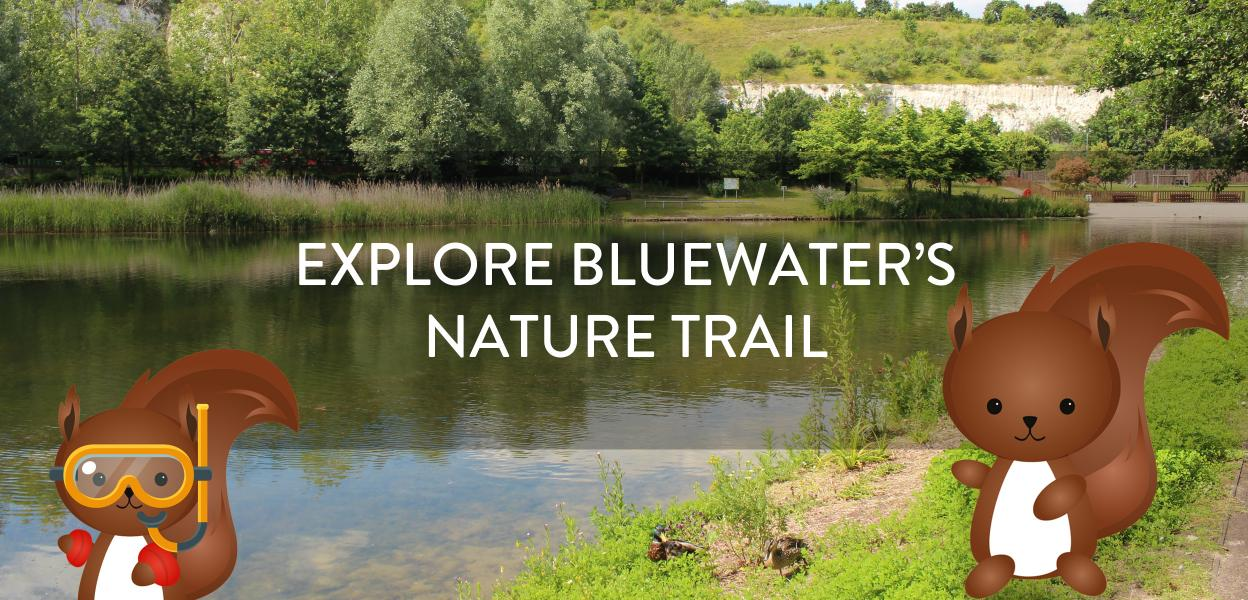 Explore Bluewaters Nature Trail, things to do outdoors Bluewater, Kent