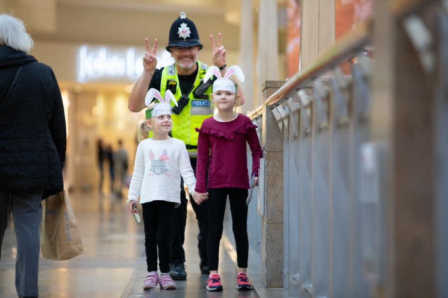 Security at Bluewater, Kent