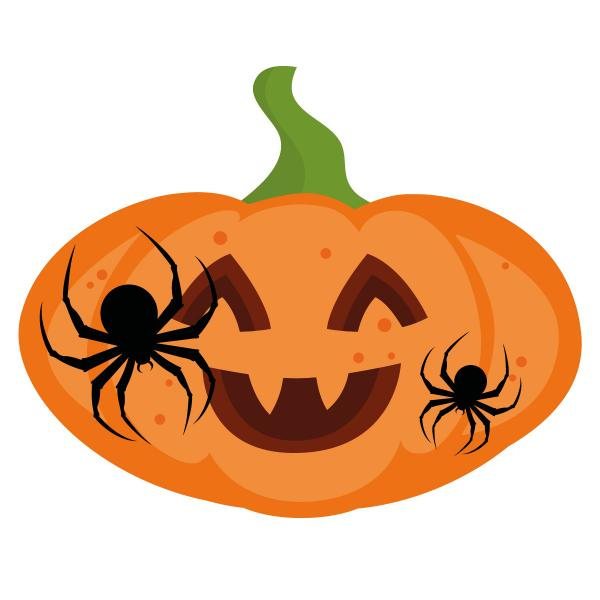 Discover the Bluewater pumpkin trail in Kent